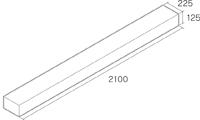 オールドスリーパー2100