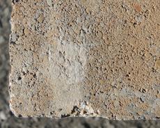 舗装用コンクリートブロック「アルテアWタイプ」ご理解ください